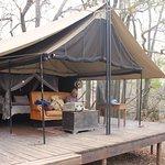 Honeyguide Tented Safari Camps Foto