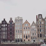 Best picture of Amsterdam when pigeon flow pass the frame