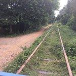 Bamboo Train Foto