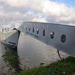 Discover Hawaii Tours Foto