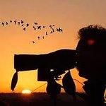Los aficionados a las aves pueden disfrutar debido a la gran biodiversidad al ser zona ZEPA