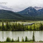 Photo of Bow Valley Parkway