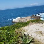 Why you have to visit us and enjoy the beauty of Hermanus