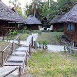 Mafia Beach Bungalows Foto