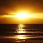 Sandcastle Resort at Lido Beach Foto