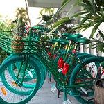 Martone Bike Hire