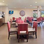 Comfort Inn & Suites Carbondale Foto