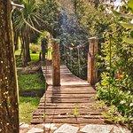 Nuestro bello puente colgante para cruzar el arroyito..