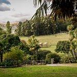 Vista de nuestro bellísimo parque a las sierras..