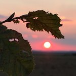 Sunset on the Somme
