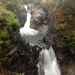 View from one of the platforms at Little Qualicum Falls Provincial Park