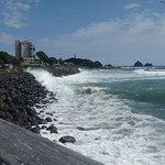写真Coastal Walkway枚
