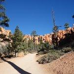 Photo de Navajo/Queens Garden Loop
