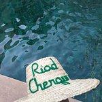 Photo of Riad Chergui