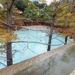 shallow pool, no swimming