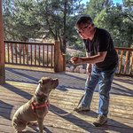 "Training ""Chunk"", our overnight dog from Best Friends, on the porch at XBarH"