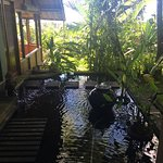 A wonderful 6 day yoga retreat held at Bali Mountain Retreat!