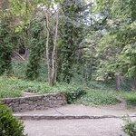 El parque del viejo hotel y la gran vegetacion