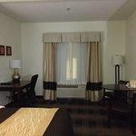Foto de Comfort Inn Lexington South