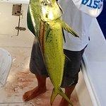 High Noon Sport Fishing Foto