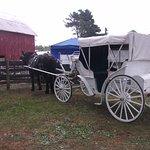 Walnut Grove Farm Foto