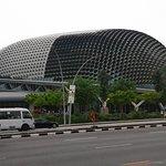 Big Durian