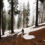 Panther Gap Trail