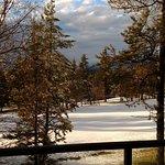 Foto de Meadow Lake Resort
