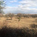 Isoitok Camp - Manyara Foto