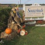 Foto van Seawinds Cottages