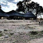 Am Ruaha River liegt das Camp sehr idyllisch .....