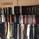 Alpaca Scarves...Directly From The Andes Mountains in Ecuador