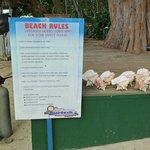 Photo of Seven Mile Beach