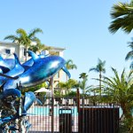 Photo of Dolphin Bay Resort & Spa