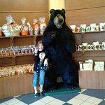Visit the bear