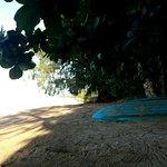 Canoë disponible sur le bord de la plage.