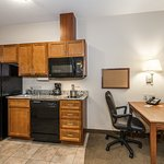 Well-equipped kitchen in Queen Studio Suite