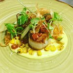 Canadian Scallops w/ corn custard, charred corn, pickled finger fennel, confit chorizo and parsn