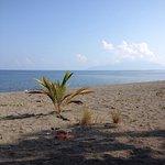Photo of Sea World Club Beach Resort