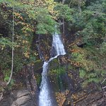Devils Fork State Park Photo