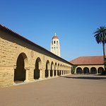 Stanford Quad with Hoover Tower