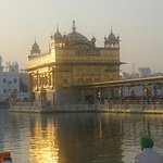 When the early morning sun rays makes the Golden Temple shine even brighter.