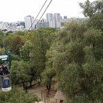 Metric (Jardim Zoologico)