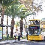Visites en bus