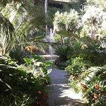 Photo de Giardini La Mortella