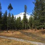 Tunnel Mountain Trailer Court Campground Foto
