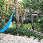 Photo of Boardwalk Hotel Aruba