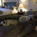 Zdjęcie Craigellachie Hotel