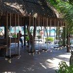JoJo's bar and seafood restaurant!