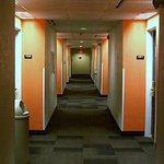 spotless halls, usually very quiet. what's up with the circus orange walls?